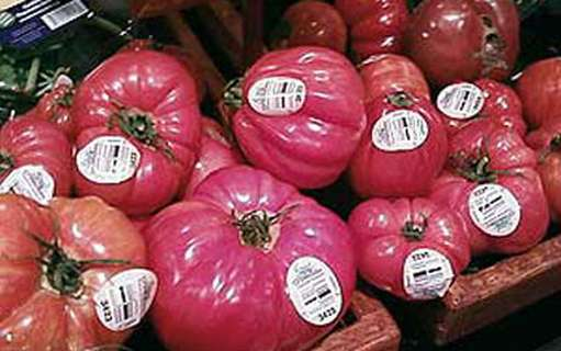 Metro likes GS1 DataBar on tomatoes